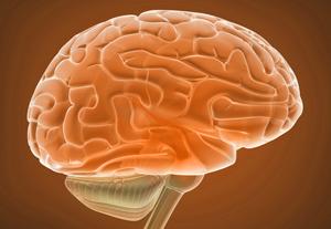 Тренируйте свой мозг